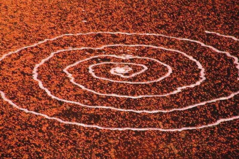 CREATIEF COMMUNICEREN - COPYRIGHT: WWW.FOTOMISSIE.NL
