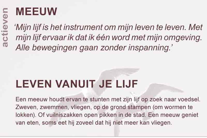 LEREN DOOR DIEREN - COPYRIGHT: WWW.FOTOMISSIE.NL