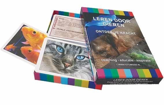 Totemdieren - Elk dier heeft kwaliteiten die jou kunnen helpen en waar je van kunt leren.